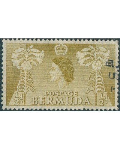 Bermuda 1953 SG135A ½d olive Flowers QEII FU