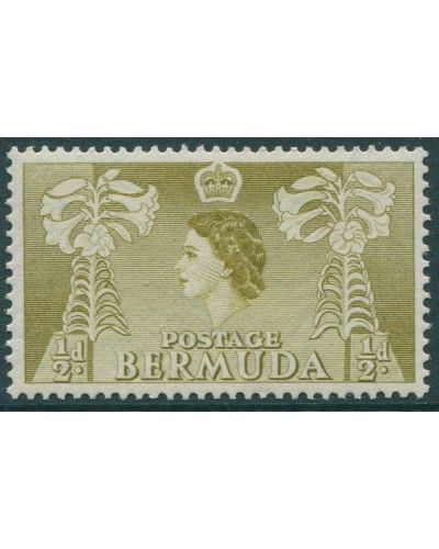 Bermuda 1953 SG135a ½d olive Easter Lilies QEII MLH