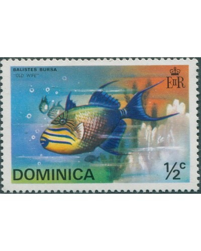 Dominica 1975 SG452 ½c Queen Triggerfish MNH