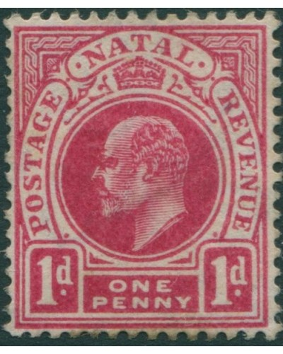 Natal 1902 SG128 1d red KEVII MLH