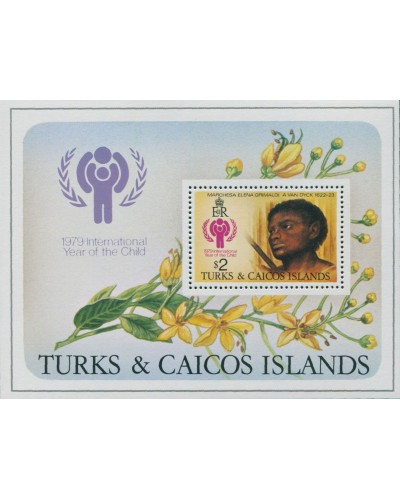 Turks and Caicos Islands 1979 SG544 IYC MS MNH